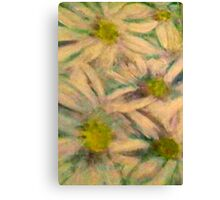 Daisy By Catalea  Canvas Print