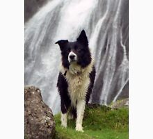 Indy at Aber Falls Unisex T-Shirt
