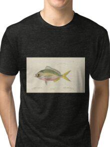 Natural History Fish Histoire naturelle des poissons Georges V1 V2 Cuvier 1849 078 Tri-blend T-Shirt