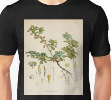 The botany of the Antarctic voyage of H M  discovery ships Erebus and Terror in the Years 1839 1843 Joseph Dalton Hooker V1 017 Unisex T-Shirt