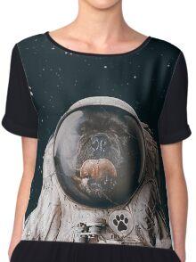 Space Dog Chiffon Top