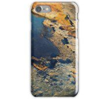 Irish Moss iPhone Case/Skin