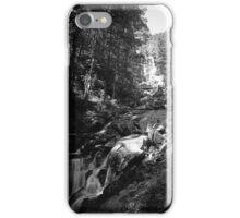 Amicalola Falls iPhone Case/Skin