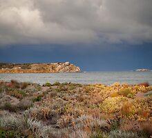 Granite Island by sedge808