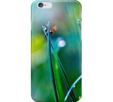 fly in the dewy grass bright sunny morning bokeh background iPhone Case/Skin