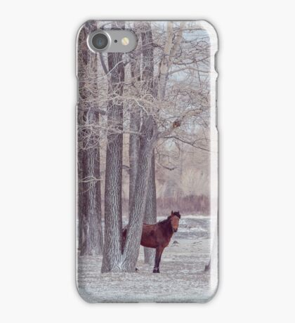 lonely horse in front of snowy winter forest iPhone Case/Skin
