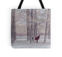 lonely horse in front of snowy winter forest Tote Bag