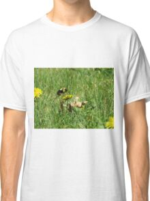 Bumble Bee Flying to Flower Classic T-Shirt