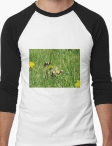 Bumble Bee Flying to Flower Men's Baseball ¾ T-Shirt