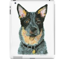 Australian Cattle dog - Blue iPad Case/Skin