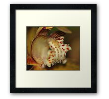 Orchid in Super Macro Framed Print