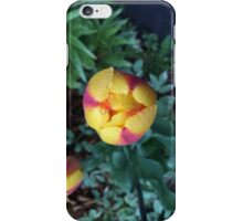 floral series 7 iPhone Case/Skin