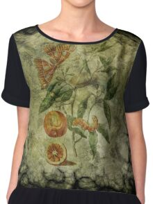 Botanica Malefactum 5 - Sweet Orange Chiffon Top