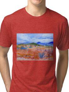 Hoekoe Valley Tri-blend T-Shirt