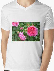 Pink rose in the garden. Mens V-Neck T-Shirt