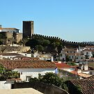 Medieval Obidos, historic walled city in Portugal by Stephen Frost