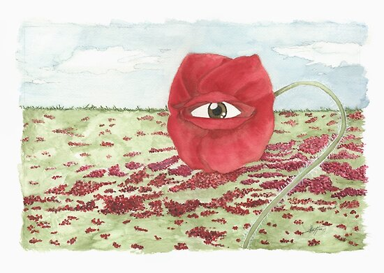 In a field of blind poppies, one eye is king by Peter Zentjens