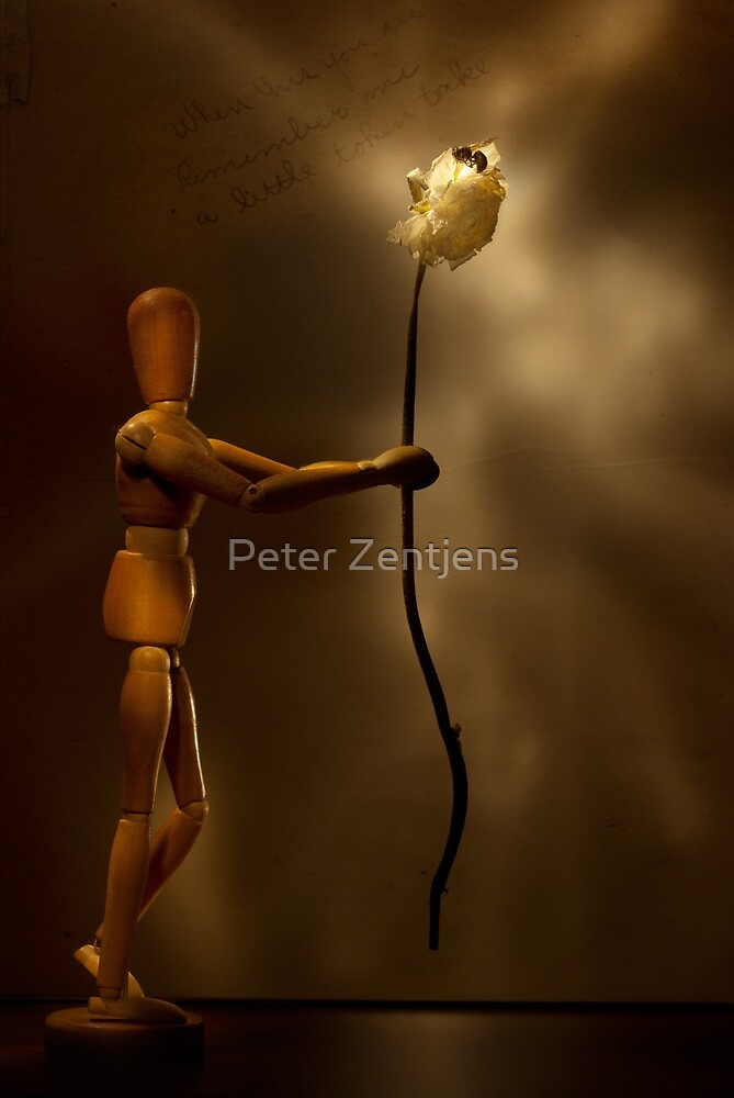 Wooden love by Peter Zentjens