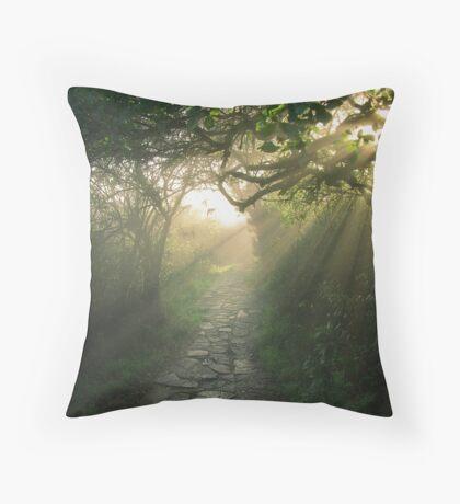 God's Path Throw Pillow