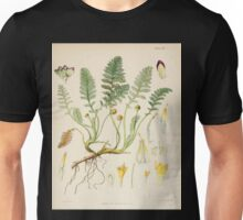The botany of the Antarctic voyage of H M  discovery ships Erebus and Terror in the Years 1839 1843 Joseph Dalton Hooker V1 018 Unisex T-Shirt