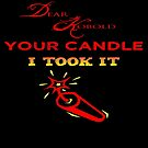 I Took The Candle by Catherine Liversidge
