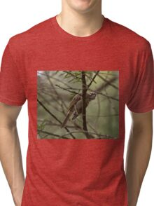 What you lookin' at? Tri-blend T-Shirt