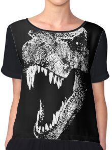 I'm a Dino Fan... Chiffon Top