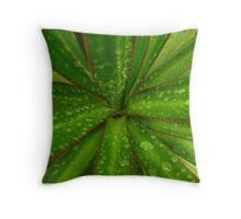 Plant leaves with winter rain drops Throw Pillow