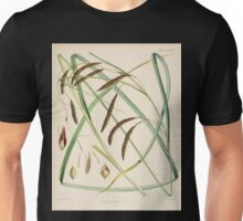The botany of the Antarctic voyage of H M  discovery ships Erebus and Terror in the Years 1839 1843 Joseph Dalton Hooker V1 129 Unisex T-Shirt