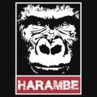 Remember Harambe by MikeMcGreg