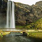 Seljalandsfoss Walking Bridge by Caleb Ward
