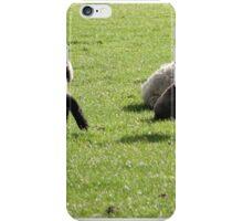 Sheepish iPhone Case/Skin