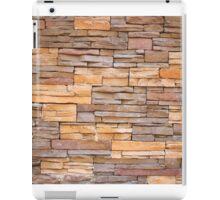Horizontal Narrow Brick Facade iPad Case/Skin