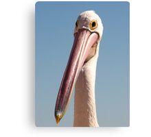 Pelican just fits the bill :-) Canvas Print