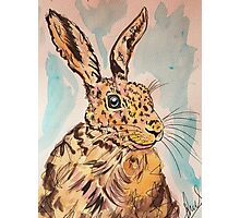 MRS HARE Photographic Print