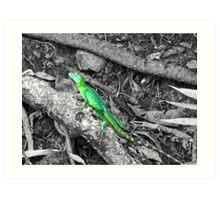 Colorized Lizard Art Print