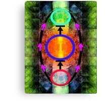 THE THREE SPHERES 1 Canvas Print