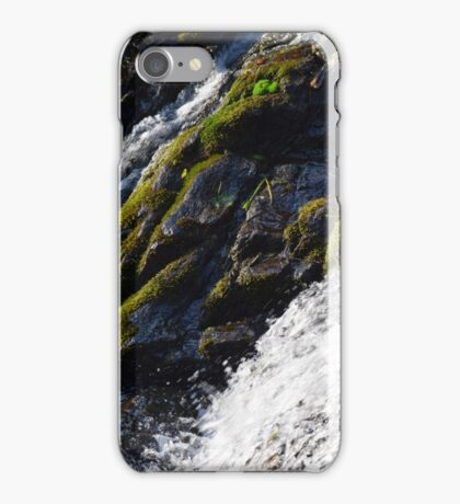 Moss By The Water iPhone Case/Skin