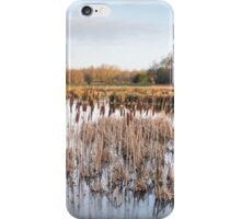 Mere Light iPhone Case/Skin
