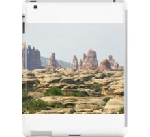 Canyonlands 30 iPad Case/Skin