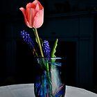 PINK TULIP IN ART GLASS by bgoddard