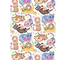 Sprinkles on Donuts and Whiskers on Kittens Photographic Print