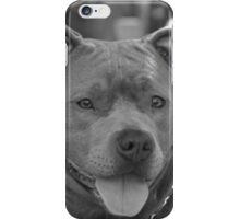 Pitbull in black and white iPhone Case/Skin