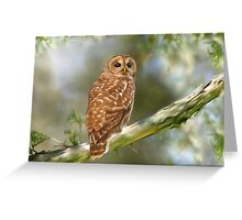 Owl Time Greeting Card