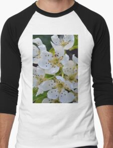 pear blossom Men's Baseball ¾ T-Shirt