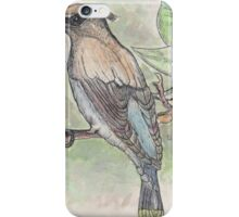 Bird On A Limb iPhone Case/Skin