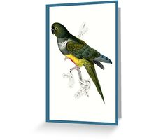 Green and Yellow Parrot Greeting Card