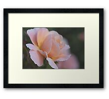 For My True Love Framed Print