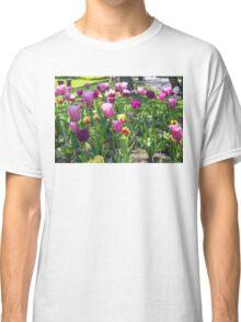 Tulips Park Gardens Classic T-Shirt