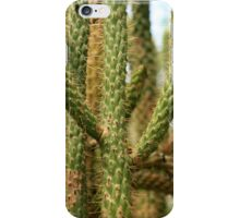 Cactus Plant iPhone Case/Skin